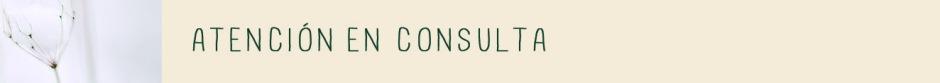 lineas-de-actuacion-consulta-disamara