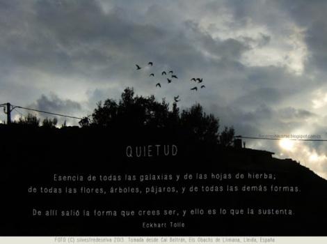 quietud_p (1)